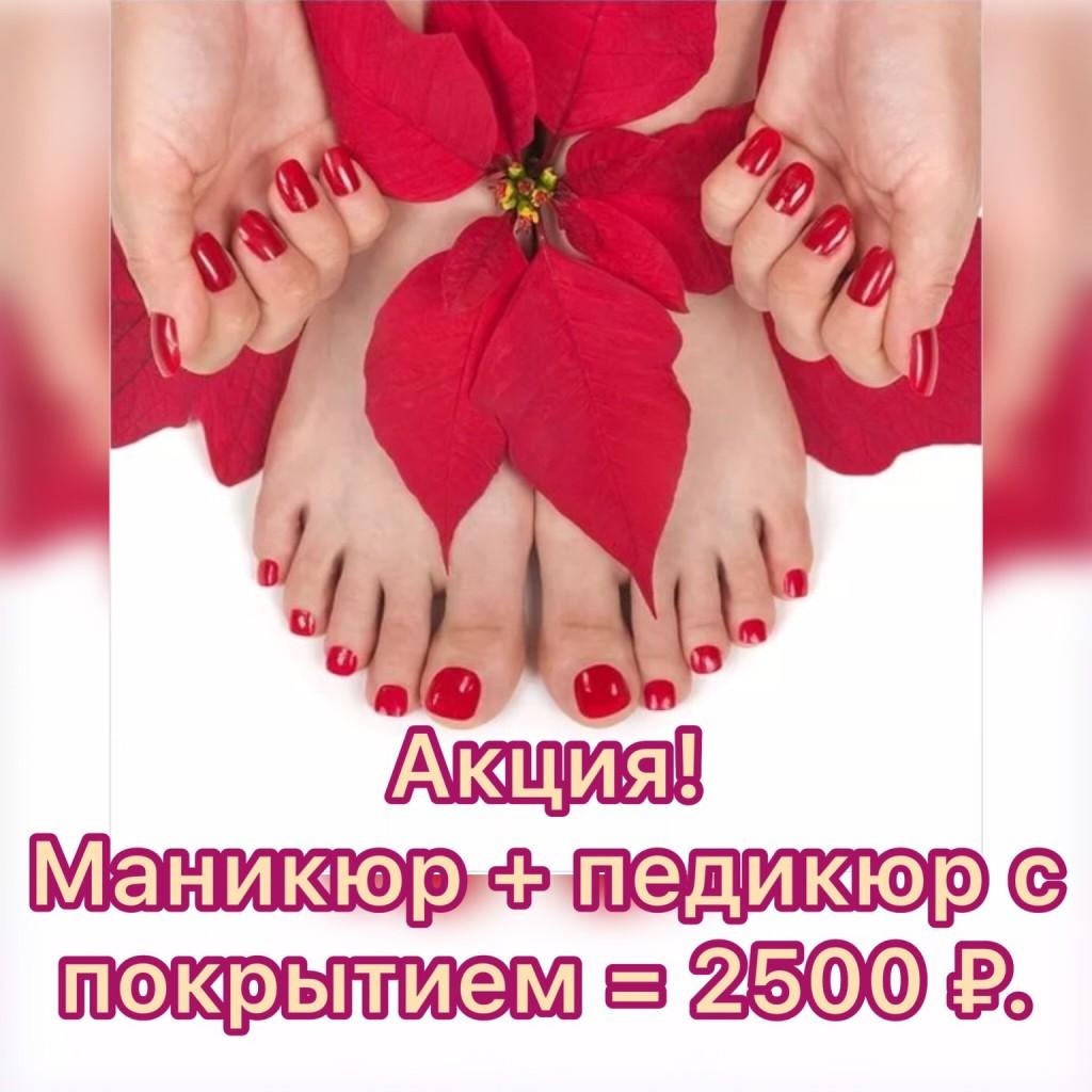 IMG_2650